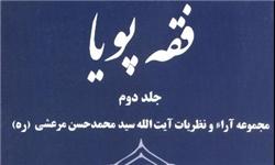 مجموعه آراء و نظریات آیت الله سیدمحمدحسن مرعشی (ره) منتشر شد.