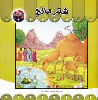 مجموعه حیوانات در قرآن دو: شتر صالح
