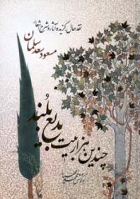 چندین هزار بیت بدیع بلند: نقدحال، گزیده آثار و شرح اشعار مسعود سعد سلمان