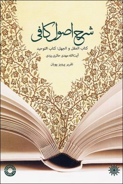 شرح اصول کافی؛ کتاب العقل و الجهل، کتاب التوحید
