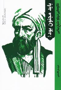 پیشگامان دانش و فضیلت 2: باید مجنون بود (نگاره هایی درباره شیخ بهایی)
