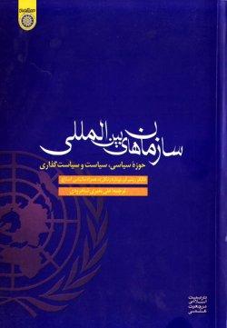 سازمان های بین المللی: حوزه سیاسی، سیاست و سیاست گذاری
