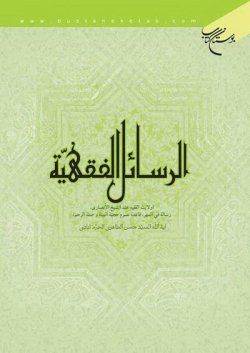 الرسائل الفقهیة (ولایت الفقیه عند الشیخ الانصاری، رساله فی المهر، قاعده عموم حجیه البینه و صله الرحم)