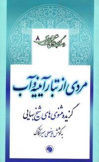 گزیده داستان های منظوم فارسی 8: مردی از تبار آیینه و آب (گزیده مثنوی های شیخ بهائی)