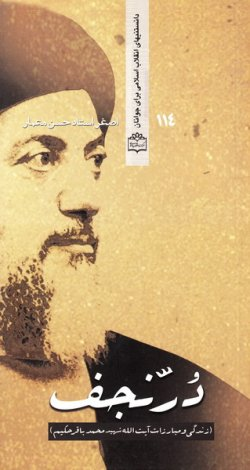 در نجف: زندگی و مبارزات آیت الله شهید سید محمدباقر حکیم
