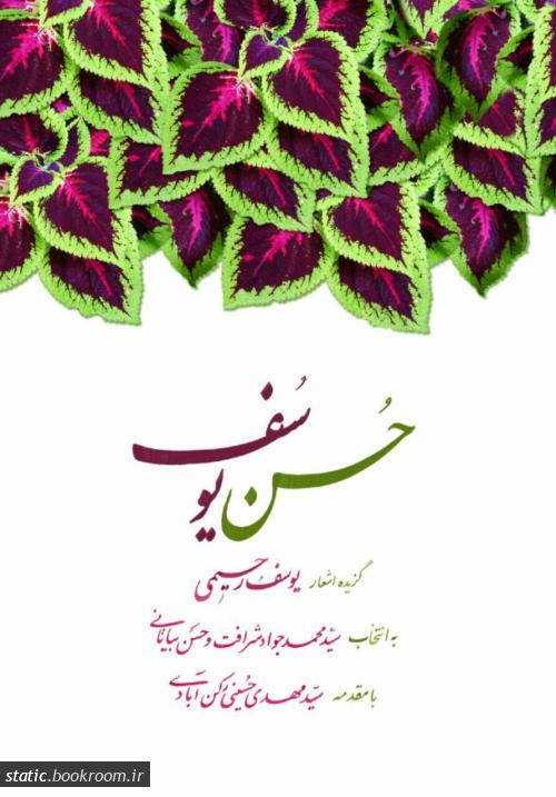 حسن یوسف