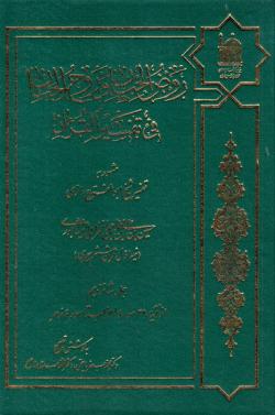 روض الجنان و روح الجنان فی تفسیر القرآن - جلد شانزدهم