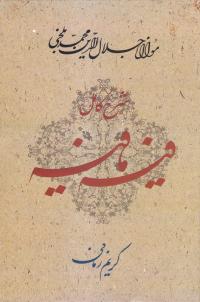 شرح کامل فیه مافیه: گفتارهایی از مولانا جلال الدین محمد بلخی (672 - 604 ه . ق)