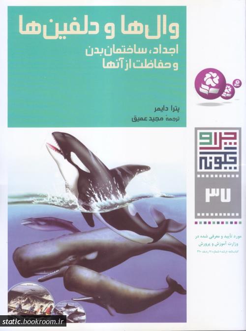 چرا و چگونه 37: وال ها و دلفین ها