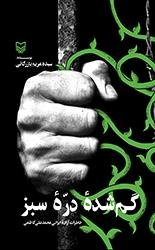 گمشده دره سبز: خاطرات اسیر آزاد شده ایرانی محمدعلی کاظمی