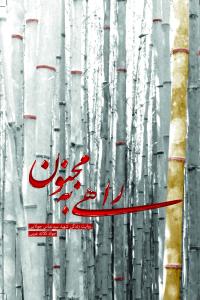 راهی به مجنون: روایت زندگی شهید سید عباس جولایی