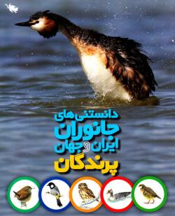 پرندگان: دانستنی های جانوران ایران و جهان