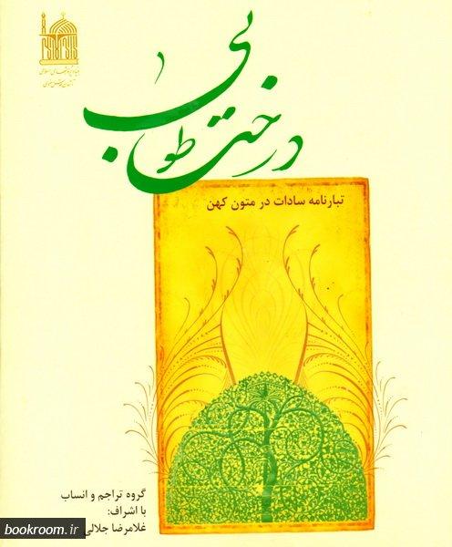 درخت طوبی: تبارنامه سادات در متون کهن - جلد دوم