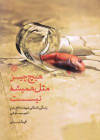 هیچ چیز مثل همیشه نیست (زندگی داستانی شهید مدافع حرم امیر سیاوشی)