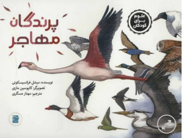 پرندگان مهاجر (علوم برای کودکان)